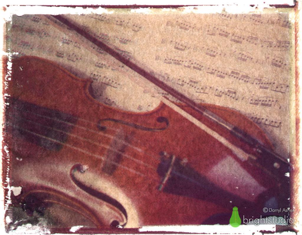 Viola #2 – Polaroid Transfer